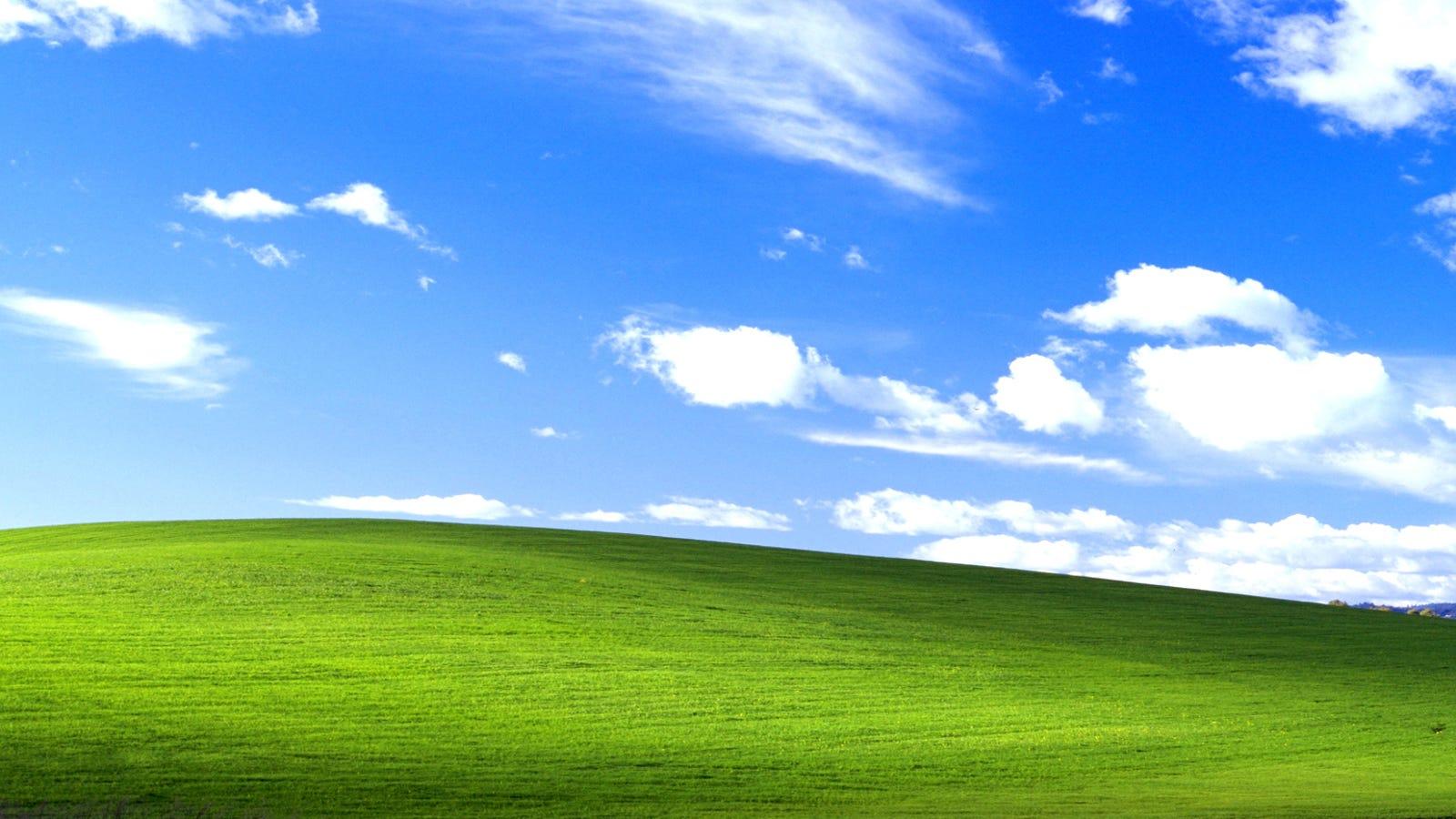 La verdadera historia de la foto de fondo de escritorio en Windows XP