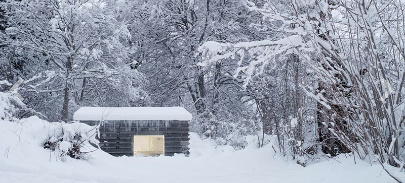 Illustration for article titled This Cozy Log Cabin in the Swiss Alps Is Completely Made of Concrete