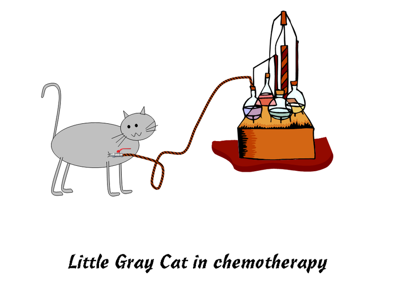 Illustration for article titled Cancer Cat Chronicles: Chemo Starts Today!