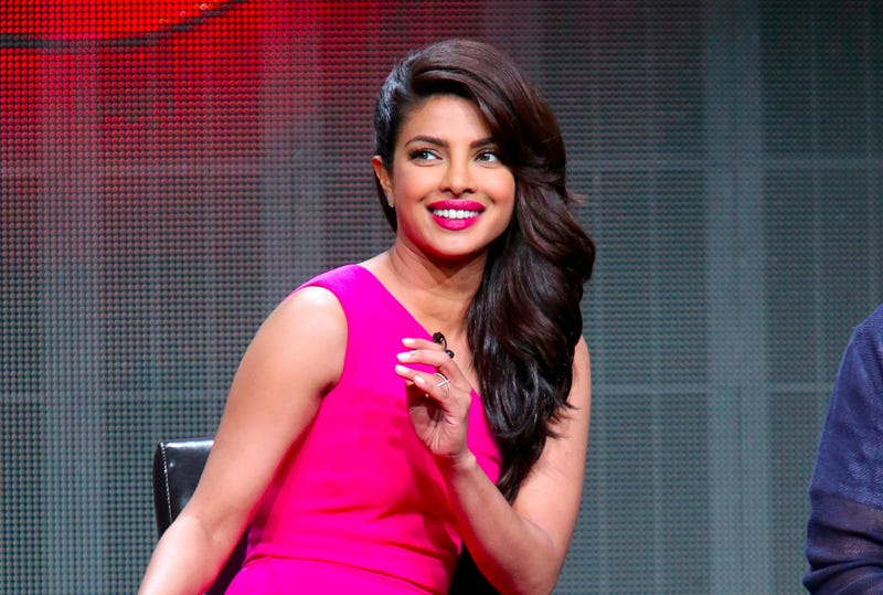 Illustration for article titled Priyanka Chopra Shines In ABC's IntriguingTerrorism Mystery Quantico