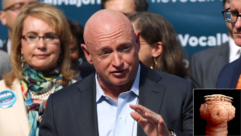 Illustration for article titled Parasitic Space Worm Controlling Mark Kelly's Body Announces Arizona Senate Bid