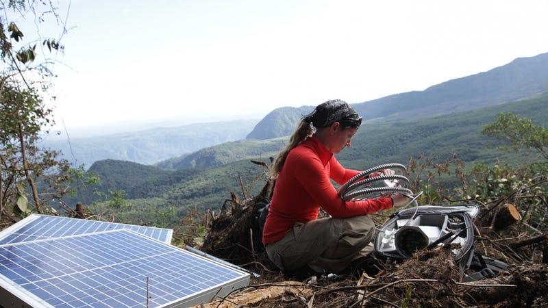 Jess Phoenix doing fieldwork. Photo Courtesy Jess Phoenix.