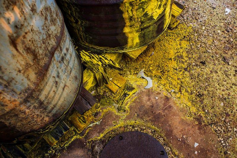 Illustration for article titled DDT-vel szennyezett tojást találtak 600 méterre a Vegyiművektől