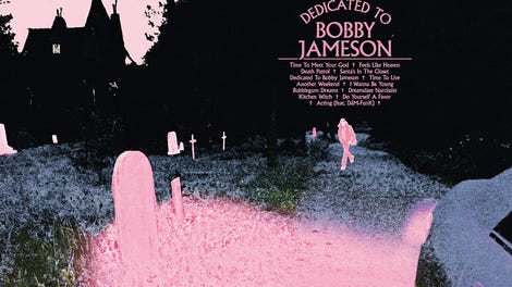 Ariel Pink Finds His Muse On The Inspired Dedicated To Bobby Jameson