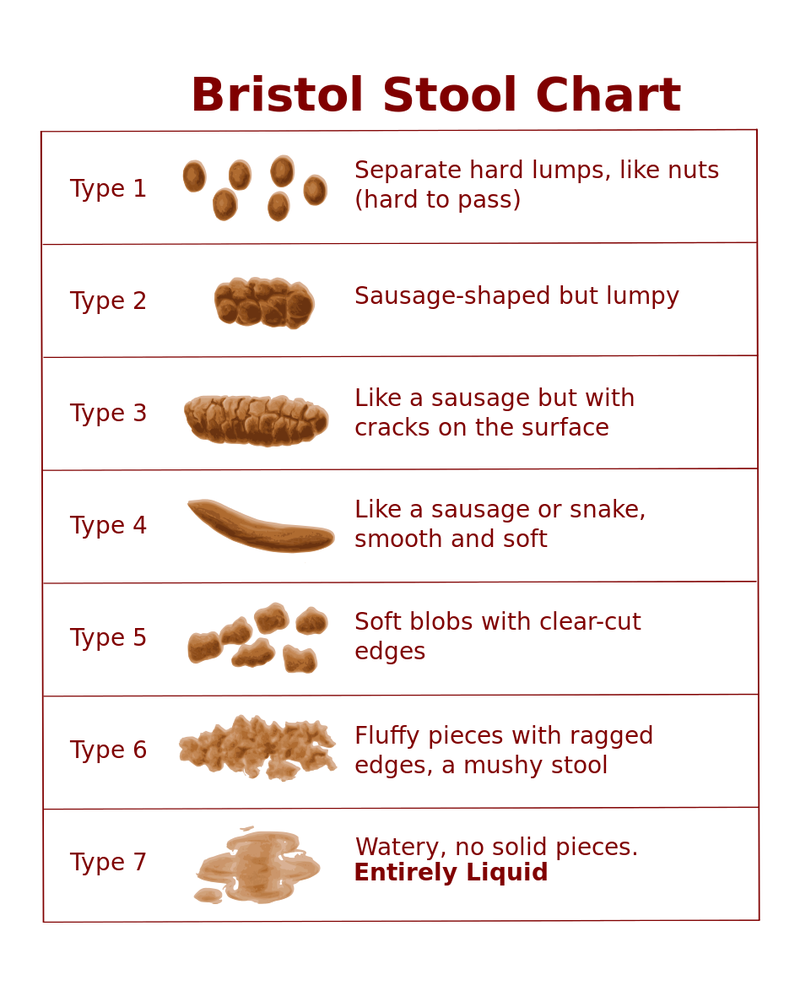 What does the shape and color of my poop mean nvjuhfo Choice Image