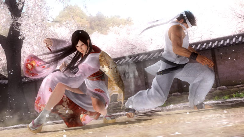 Illustration for article titled Does Team Ninja Still Hate Other Fighting Games?