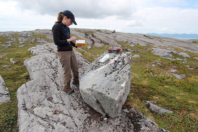 Radiokarbondatierung von Fossilien aus Höhlen auf Inseln entlang der südöstlichen Küste der Alaska Single Mama und Väter datieren