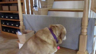 Make A Pet Gate For Your Stairs With Pvc And Fabric