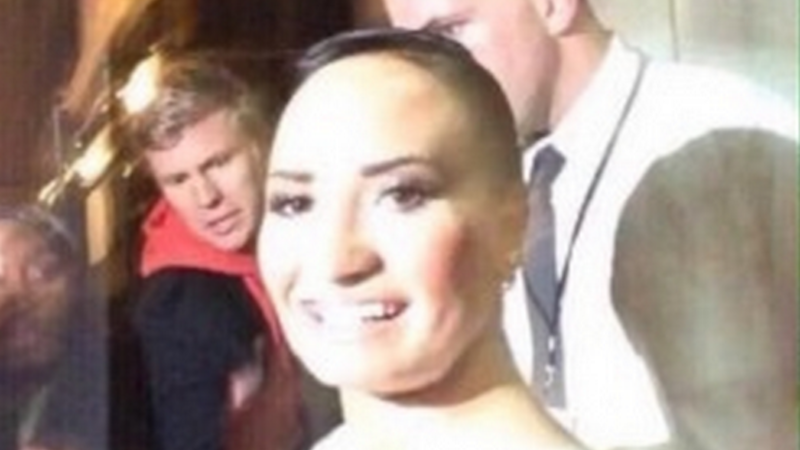 Illustration for article titled Tumblr Gives Birth to 'Poot Lovato,' Demi Lovato's Imaginary Twin Sister