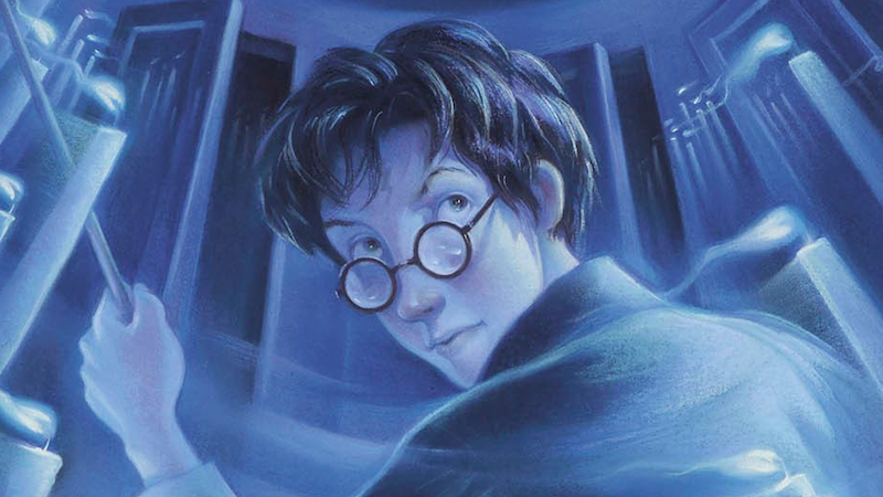 Man Discovers He's Accidentally Reading Harry Potter Fan Fic