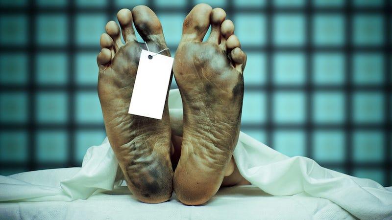 Noruega tiene un grave problema: los muertos no se descomponen