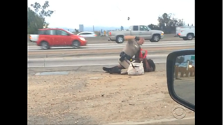 A California Highway Patrol officer is captured on video battering a woman.YouTube