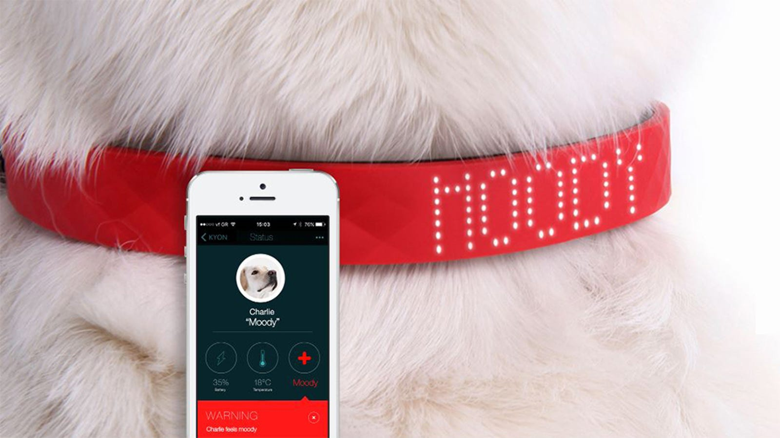 This Collar That Reads Pets' Emotions Is a Tech Travesty