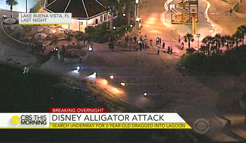 Authorities searched throughout the night June 14, 2016, hoping to find signs of a 2-year-old boy who was dragged underwater by an alligator at an Orlando, Fla., Disney resort. CBS News Video Screenshot