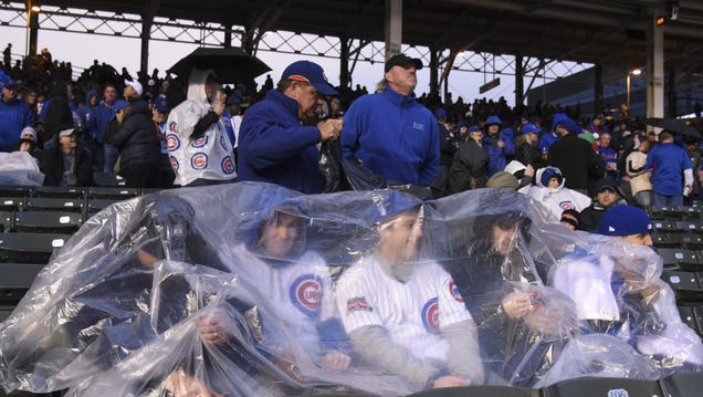 Cubs Celebrate First Championship In 108 Years In Characteristic St...