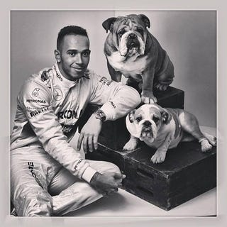 Illustration for article titled Just saw this on r/formula1, Lewis Hamilton's family portrait.