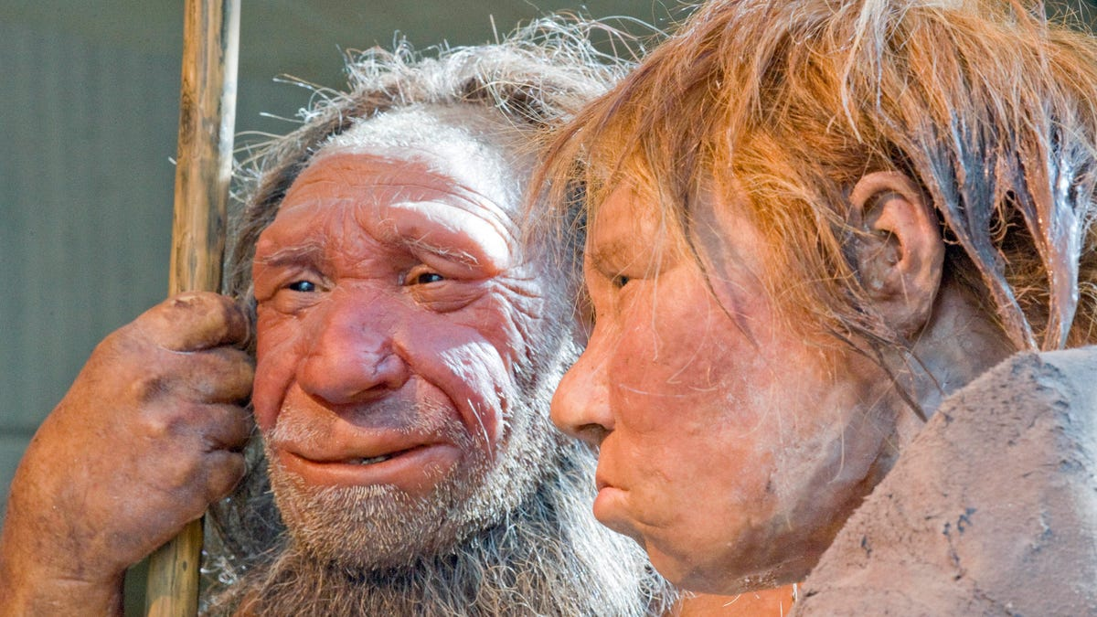 Image result for trump neanderthal