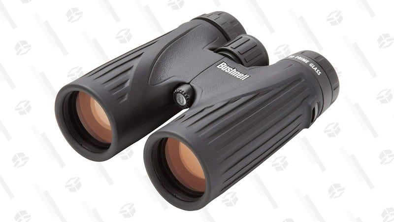 Bushnell Legend Ultra HD 10x Binoculars (Camo) | $170 | AmazonBushnell Legend Ultra HD 10x Binoculars (Black) | $139 | Amazon
