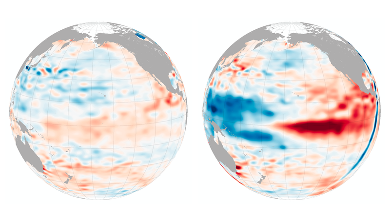 Illustration for article titled NASA Thinks We've Hit Peak El Niño