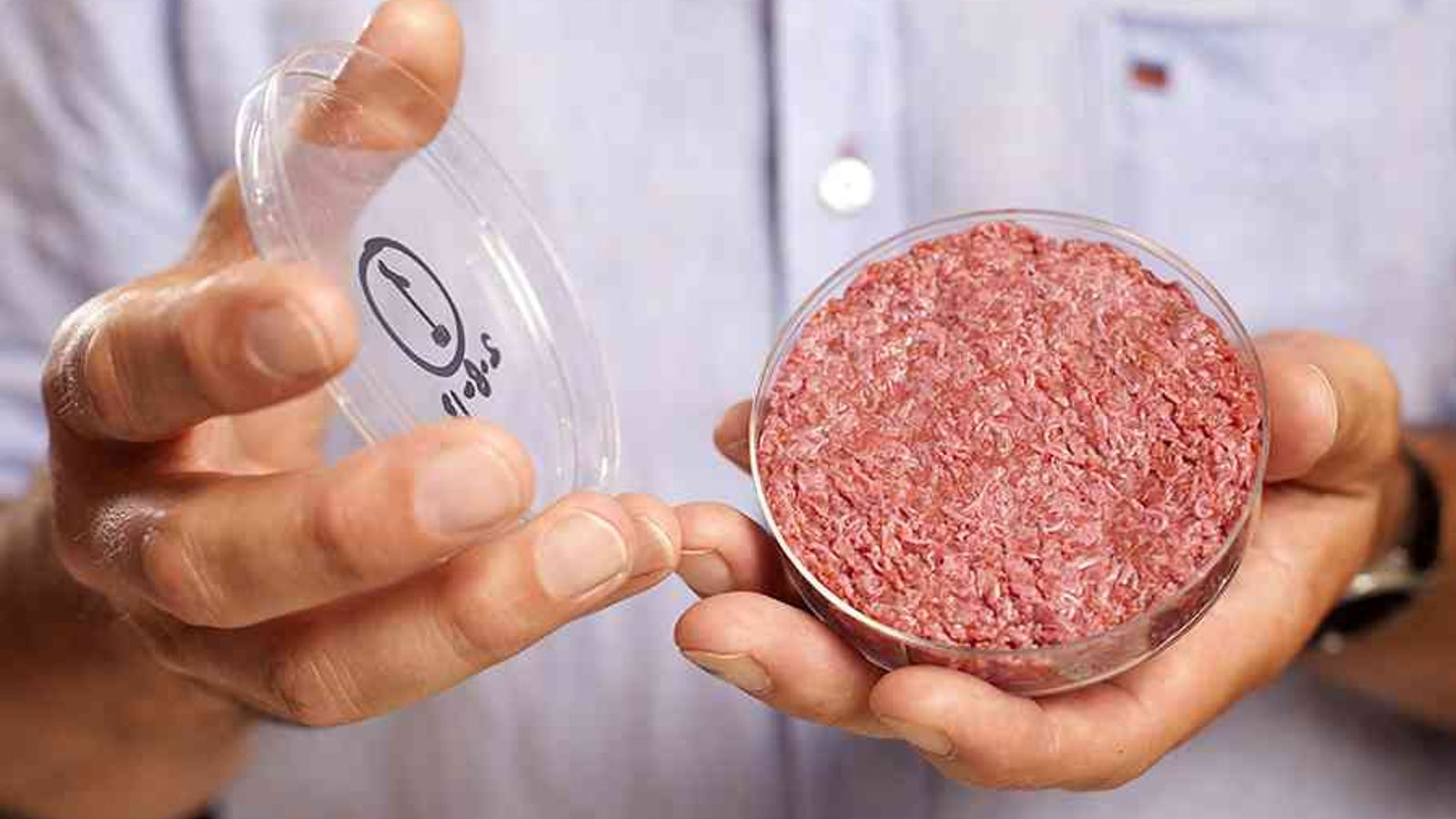 How will produce meat in the future 15