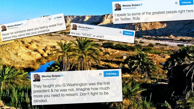 Wesley Snipes' Twitter Is an Oasis of Good In the Desert of Bad Internet