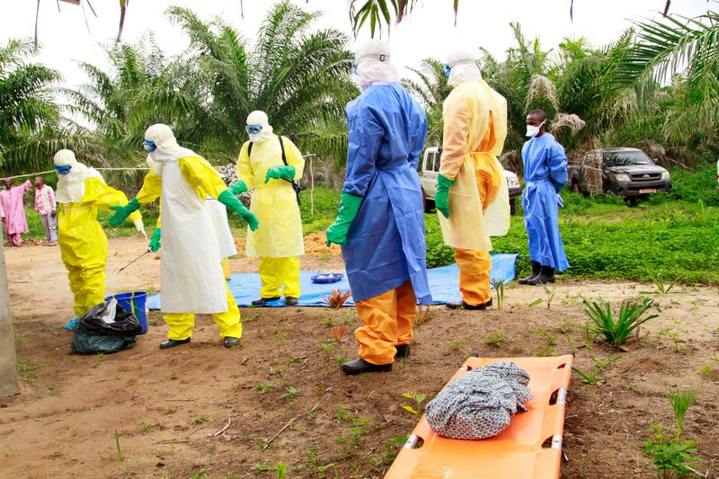 Illustration for article titled Two New Cases Of Ebola Have Surfaced In Guinea