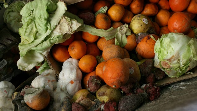 Eating to Save the Planet Isn t Just About What I Eat—It s About What I Don t