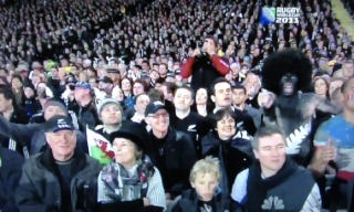 "Illustration for article titled One ""All Blacks"" Fan Stands Out In This Rugby World Cup Crowd Shot"