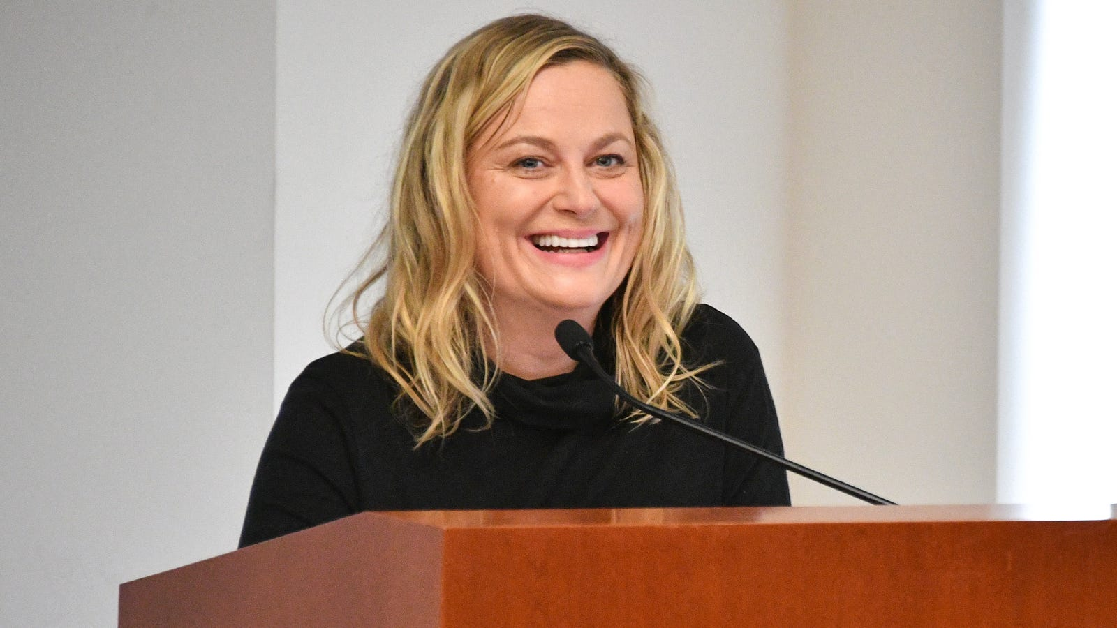 Amy Poehler to Direct and Star Alongside SNL Alumni for Netflix's Wine Country