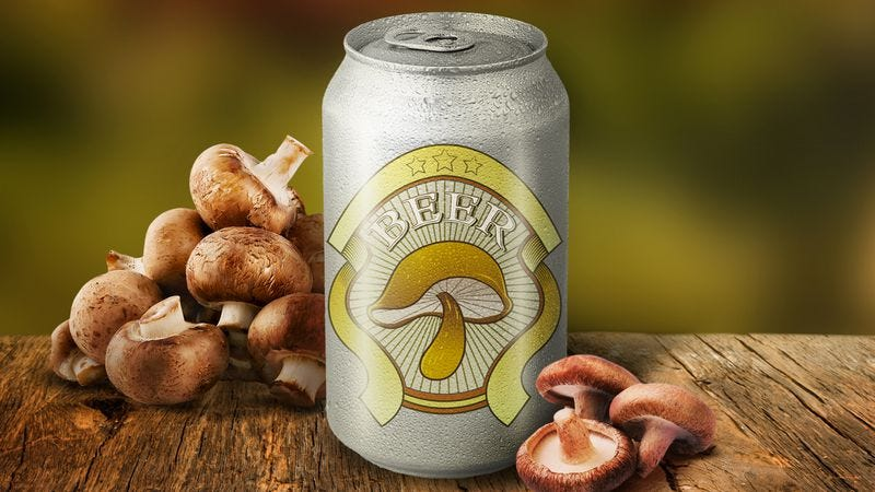 What is mushroom beer, and how (and why) do you brew it?