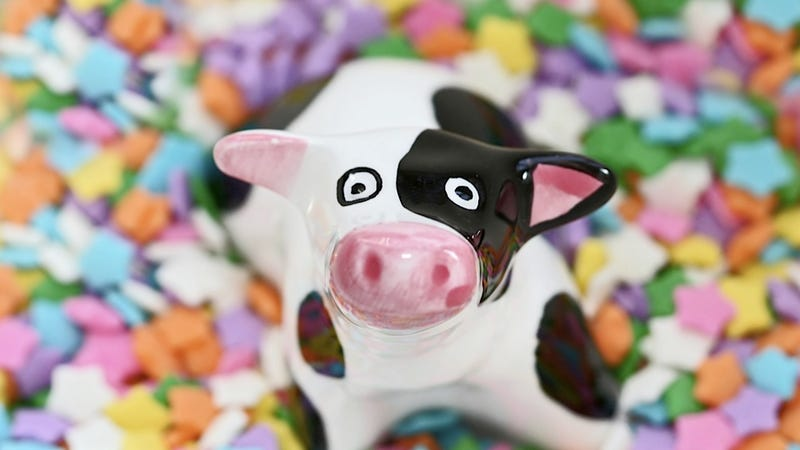 Illustration for article titled Thanks to the Drought, Cows Are Eating Candy and Cookies Faster Than a Halloween Slumber Party