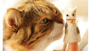 cat hairball impaction symptoms in children