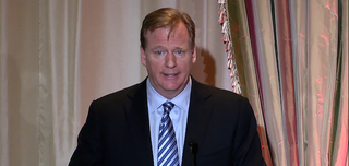 Illustration for article titled Goodell Was Wrong When He Said Casino Couldn't Have Given Up Rice Video