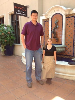 Illustration for article titled I Can't Stop Looking At Yao Ming Next To This 4-Foot-11 Woman