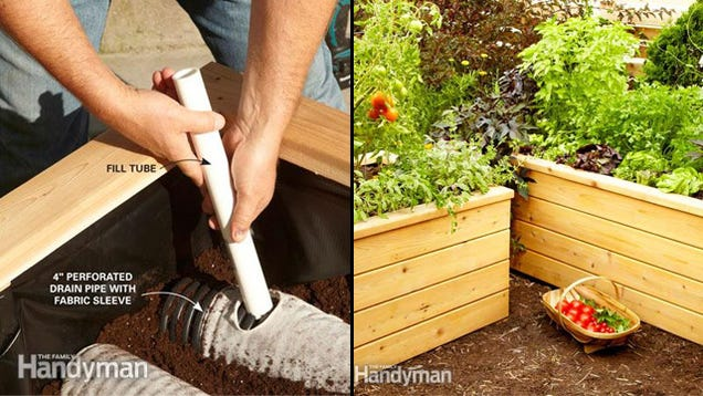 Automate your vegetable garden with these self watering for Watering vegetable garden