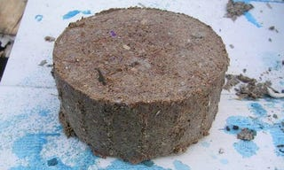 Illustration for article titled Compress Sawdust and Paper Pulp into a Fuel Briquette