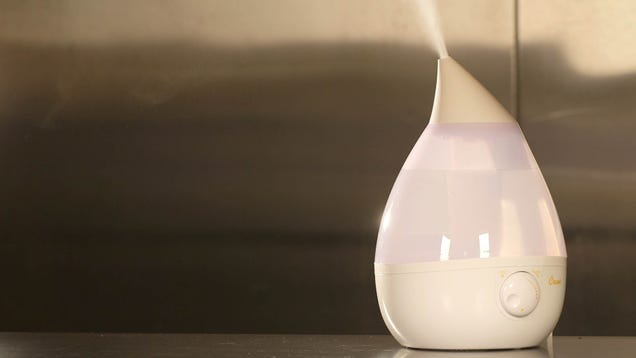 Choose the Right Humidifier for Your Room with This Video Guide