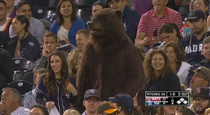 Illustration for article titled Someone Wore A Bear Suit To Petco Park