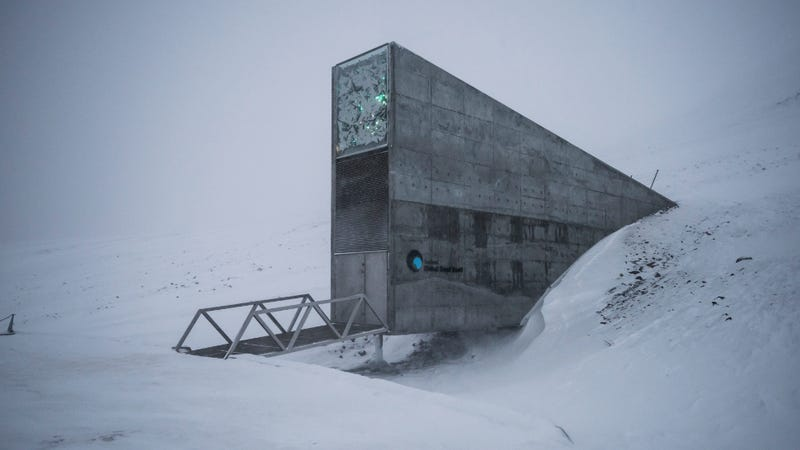 50000 new seeds deposited in Arctic Circle's Svalbard Global Seed Vault