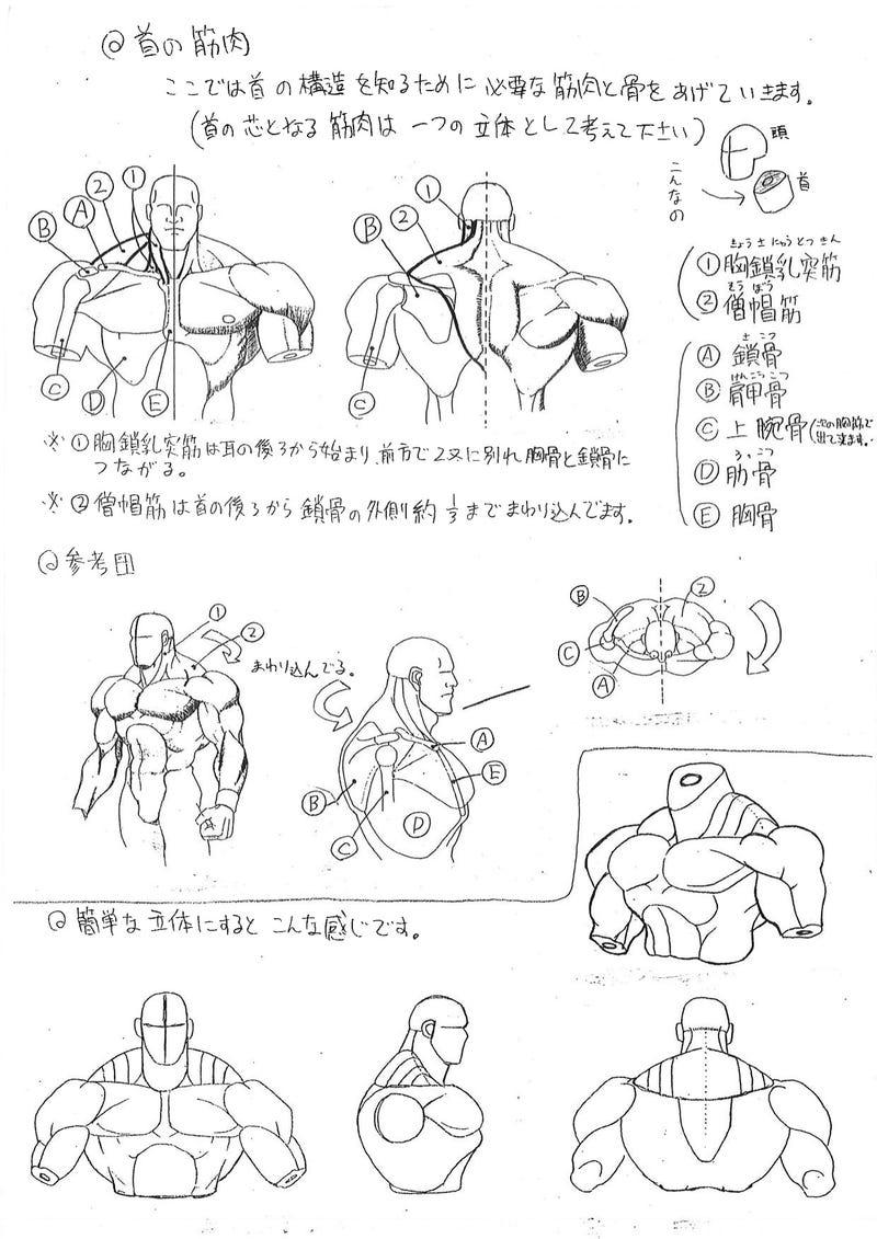 Capcoms Human Anatomical Reference For Artists Kotaku Uk