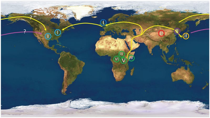 Illustration for article titled Geneticists Use Herpes to Confirm Ancient Human Migration Routes