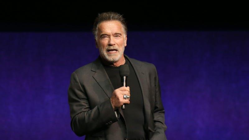Illustration for article titled Random dumbass sucker-flying-jump-kicks an unimpressed Arnold Schwarzenegger