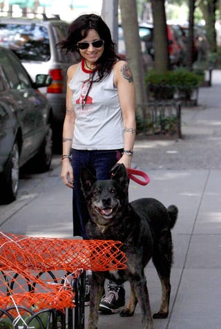Illustration for article titled Janeane Can Even Make Her Dog Laugh