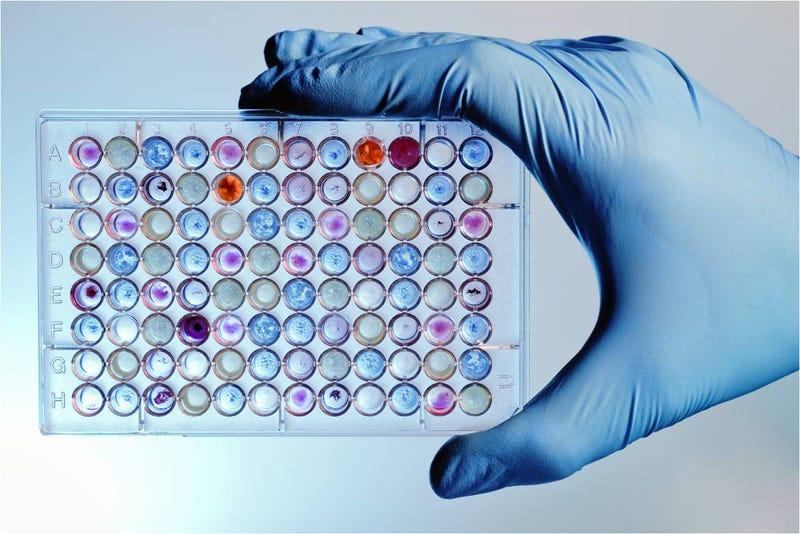 Illustration for article titled EE.UU. gastará $215 millones en analizar el ADN de 1 millón de personas