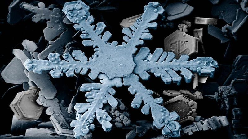 Illustration for article titled Take a look at some gorgeous snowflakes, and find out the reason they're six-sided