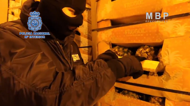 Spanish Police Bust Gang That Allegedly Infused Cardboard Produce Boxes With Cocaine