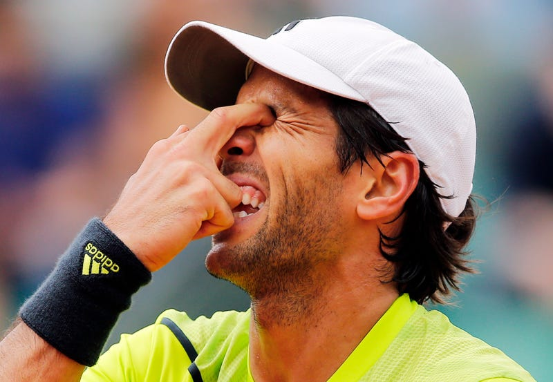 Illustration for article titled Things Didn't Go Well For Fernando Verdasco At The French Open