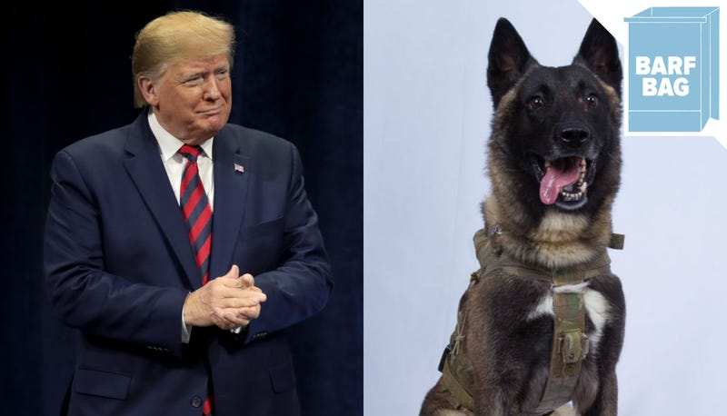 Illustration for article titled The President Has Never Met a Dog