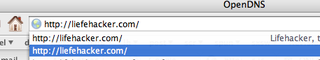Illustration for article titled Firefox Tip:  Shift-Delete mistyped autocomplete suggestions