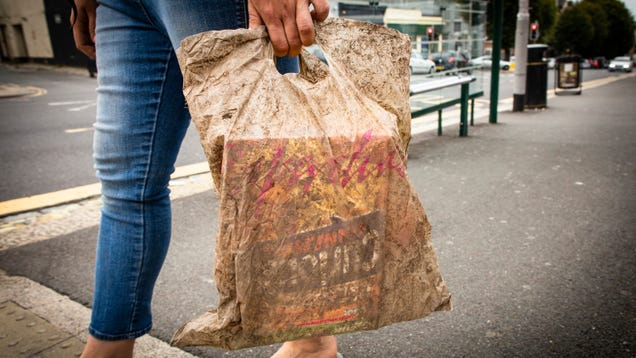 'Biodegradable  Bags Can Still Carry Groceries After Three Years in the Ground, Study Finds